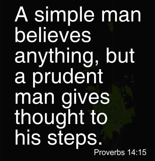 A simple man believes anything, but a prudent man gives thought to his steps
