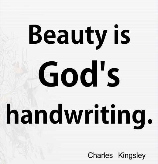 Beauty is God's handwriting